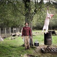 On Pig Butchery, & the Art of Communication: Farmrun [Video]