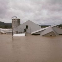 Free Online Marketing for Farms Devastated by Storm Irene