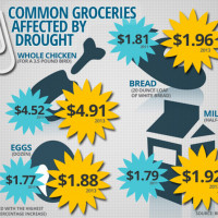 Why Your Groceries May Be More Expensive in 2013 [Infographic]