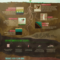 Infographic of the Week: How to Limit Arsenic in Your Food