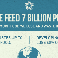 Infographic of the Week: Stop Food Waste, Feed The World