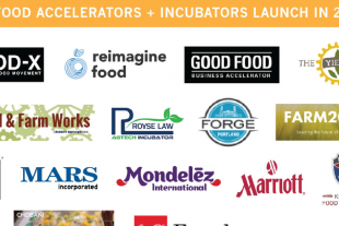 food-accelerators-2014