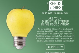 Seeds-and-chips