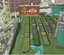 fenway-farms