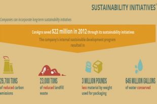 food-waste-infographic