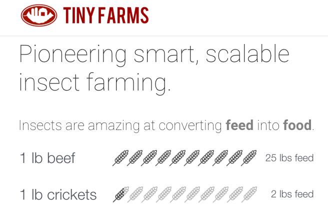 tiny-farms