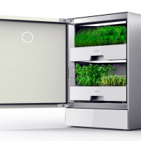 Millennial Food Innovators: How agrilution Is Democratizing Vertical Farming