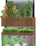 Grove Ecosystem Urban Hydroponic & Aquaponic System