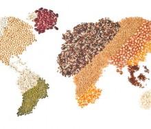 ct-big-idea-global-food-chain-bsi-photo-20160111