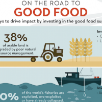 The Case For Investing In The Good Food Supply Chain