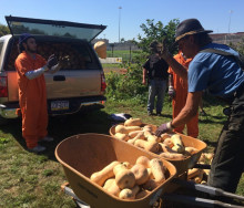 civil-eats-prison-farming