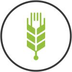 ftc_identity_wheat-isolation_transparent-01