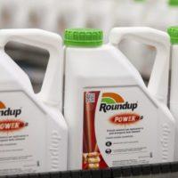Monsanto's $289M Verdict, Corona Owner Bets $4B on Marijuana + More