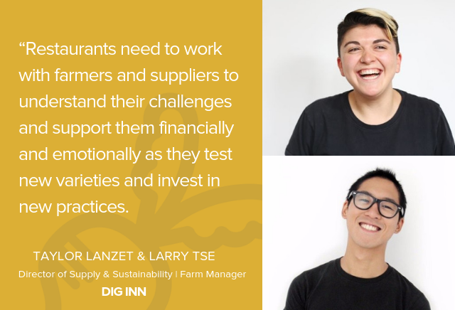 Dig Inn on Supporting Experimentation & New Growing Practices on Farms