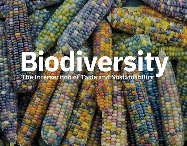Biodiversity, the intersection of taste and sustainability