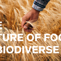 Food Biodiversity at Expo West 2019